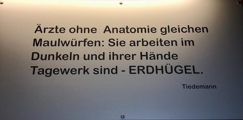AnatomieGrundkursI_Graz2019_4
