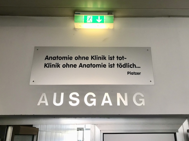 AnatomieGrundkursI_Graz2019_5