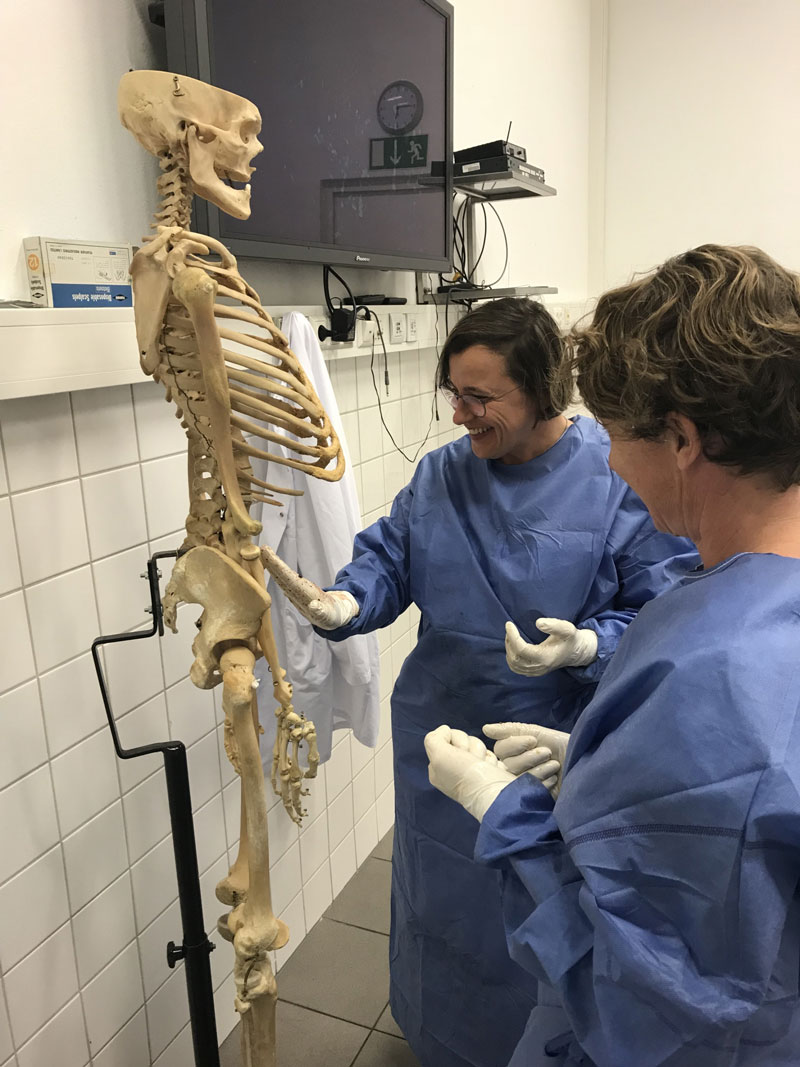 Anatomie OP-Techniken Innsbruck_2018_2 Anatomie OP-Techniken Innsbruck_2018_10