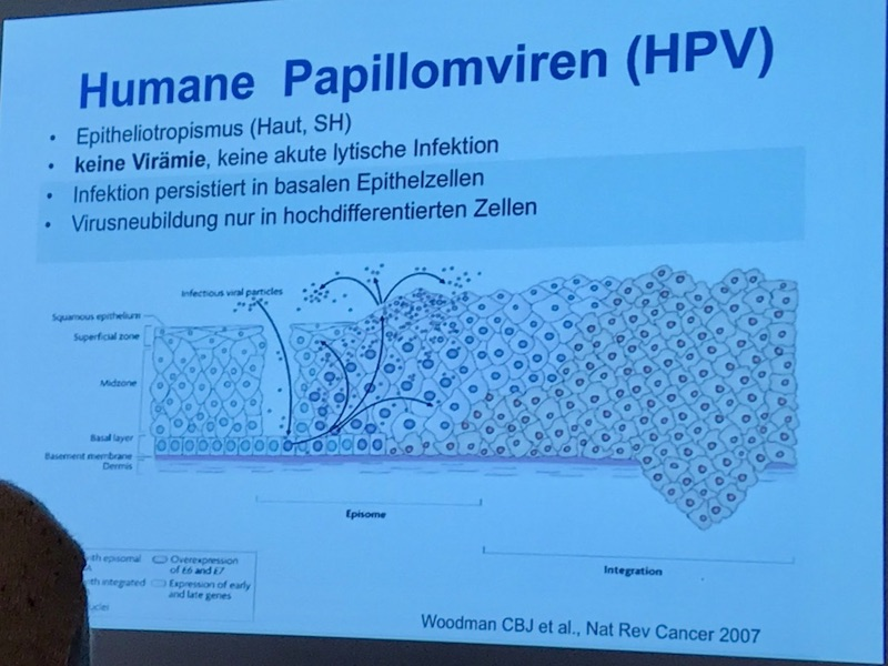 Kurs Derma STD Onkologie_Wien_2019_1