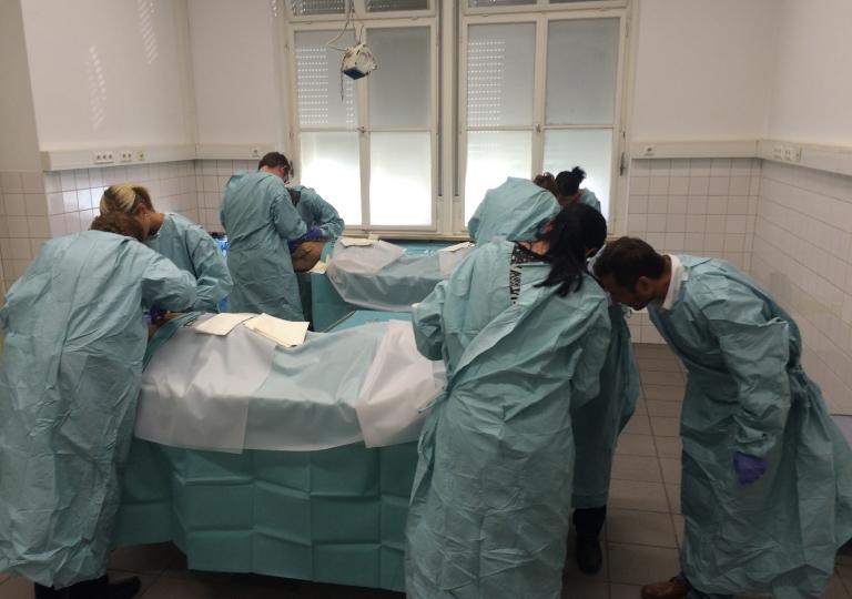 ACP Anatomie OP-Techniken Kurs Innsbruck 2015