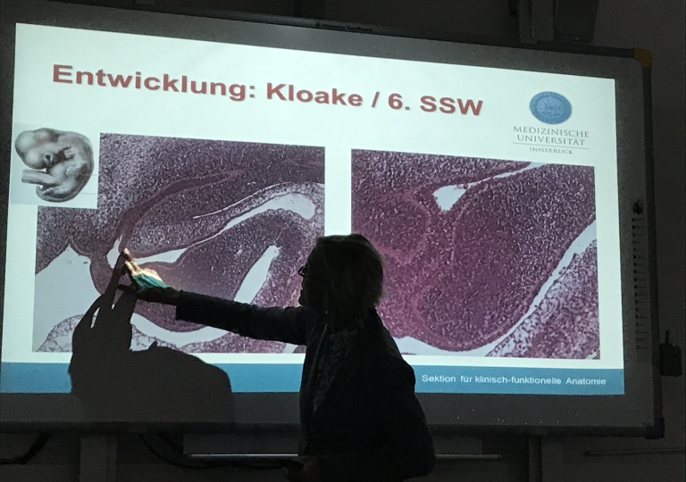 Anatomie OP-Techniken Innsbruck_2018